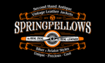 SPRINGFELLOWS